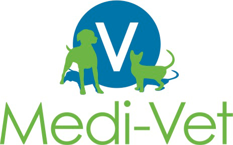Suivre sa Joie - Saskia Parein - Groupe Vicsum-Vet - Thérapie au gui chez les animaux