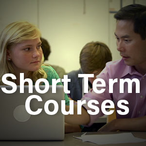Short Term Courses Button