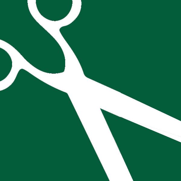 Cosmetology Program Icon