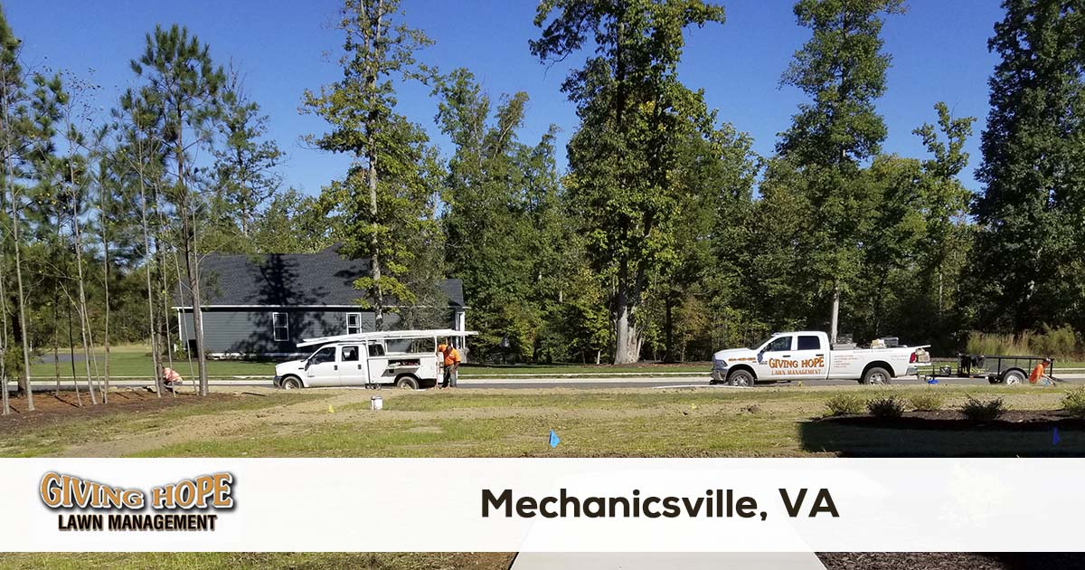 Mechanicsville lawn service