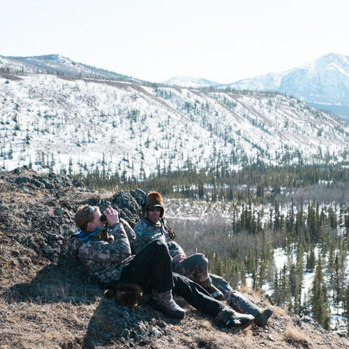 On a Spring Bison Hunt in the Yukon