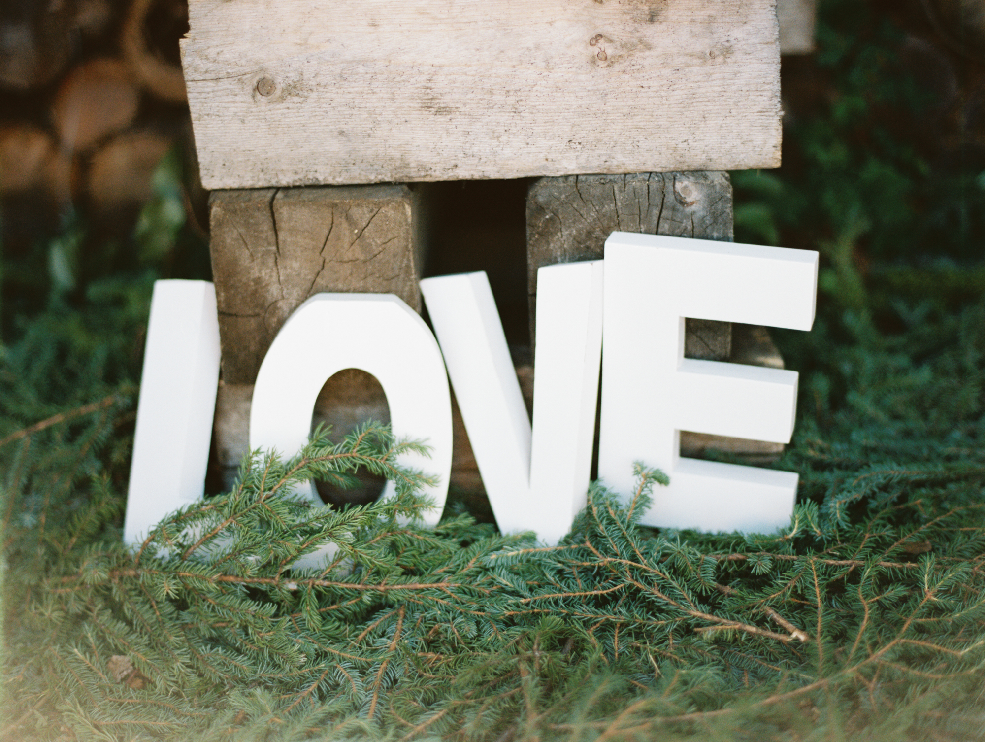 LOVE text set on green tree branches, part of the wedding decorations