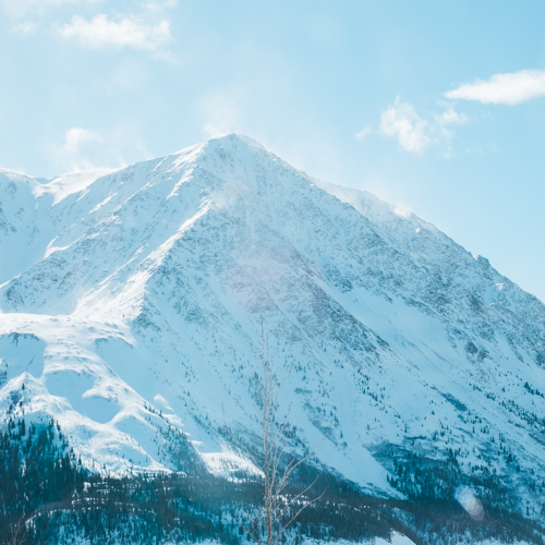 A Day Trip to Haines Junction