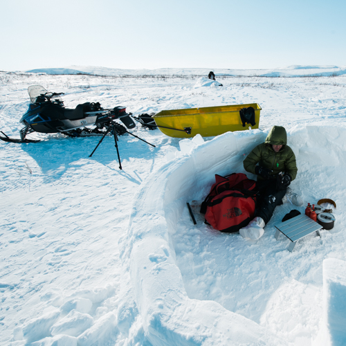 Lunch in the Arctic