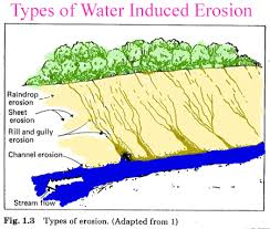 Sedimentation and Erosion Control Plans