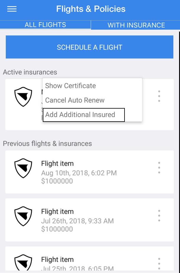 Flights & Policies Tab