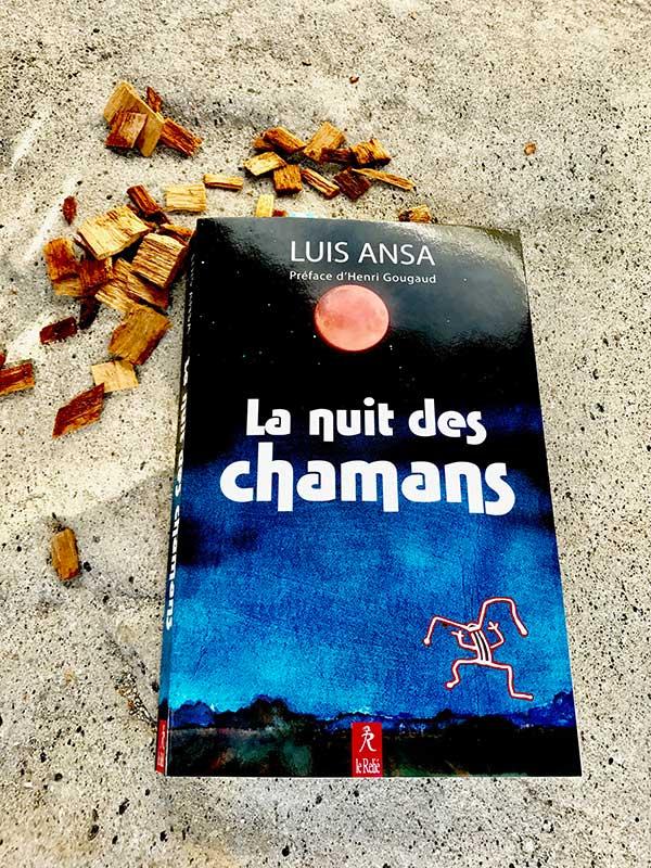 Blog Littéraire - La nuit des chamans de Luis Ansa - Suivre sa Joie - Saskia Parein