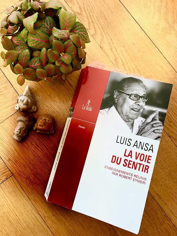 Blog Littéraire - La voie du sentir de Luis Ansa - Suivre sa Joie - Saskia Parein