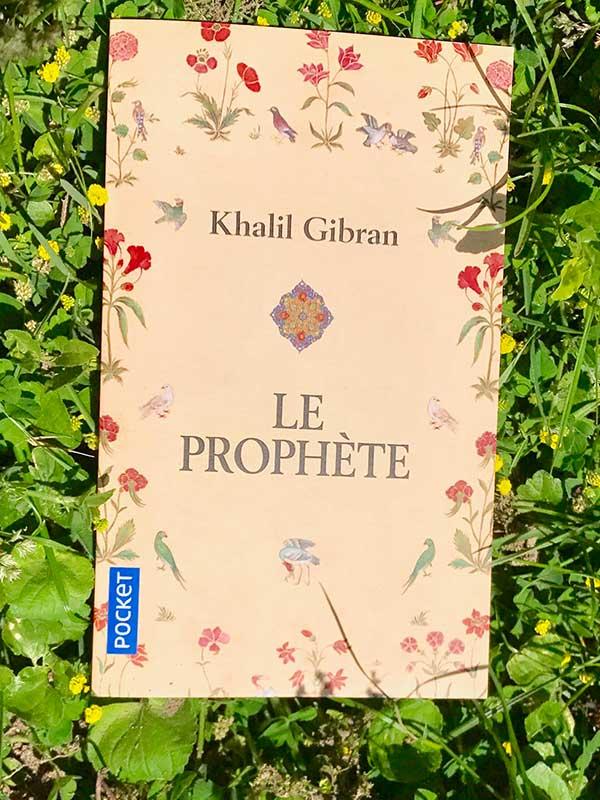 Blog Littéraire - Le prophète de Khalil Gibran - Suivre sa Joie - Saskia Parein