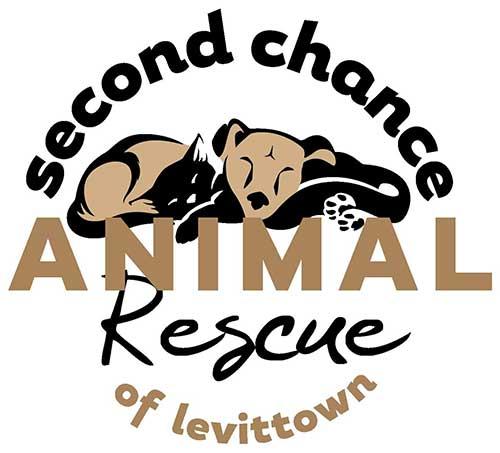 Second Chance Animal Rescue - Île Maurice - Suivre sa Joie - Saskia Parein