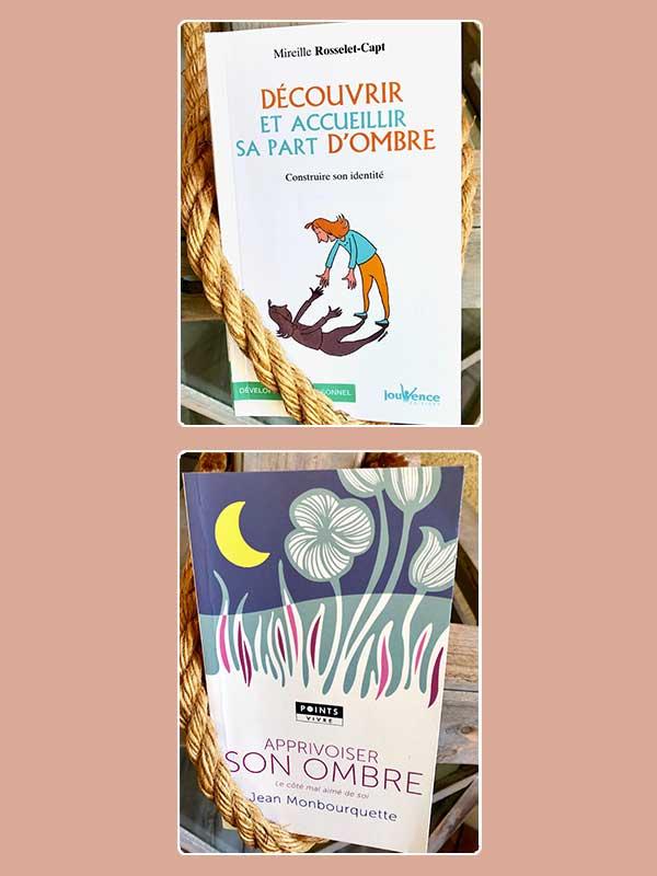 Blog Littéraire - Apprivoiser sa part d'ombre de Jean Monbourquette - Découvrir et accueillir sa part d'ombre, construire son identité de Mireille Rosselet-Capt - Suivre sa Joie - Saskia Parein