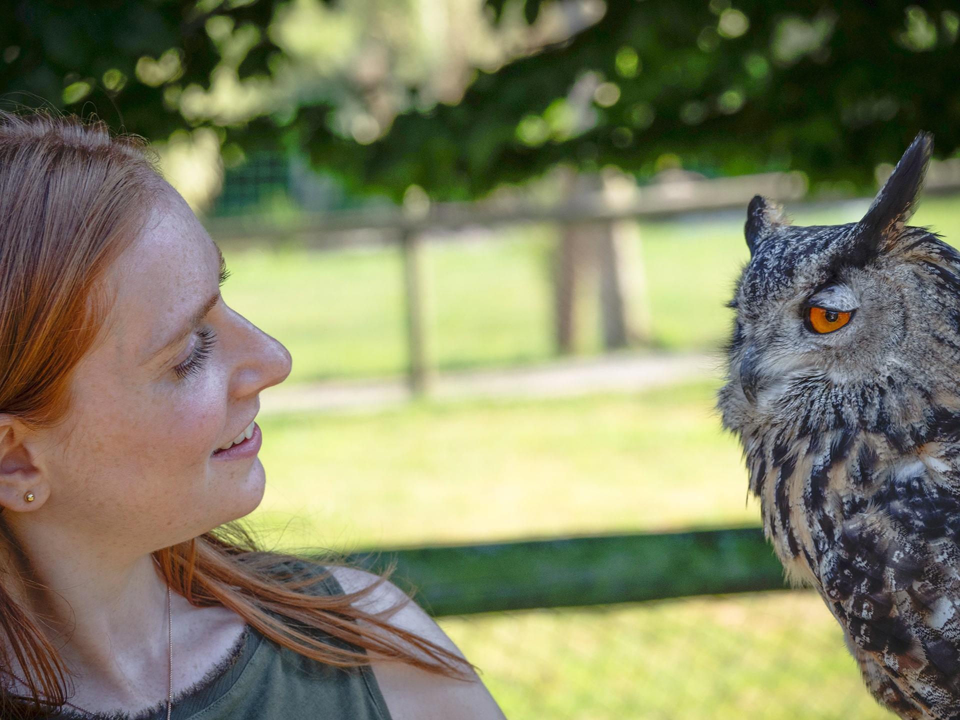 Blog Lifestyle - Apprentis Fauconniers 3 - Saskia Parein