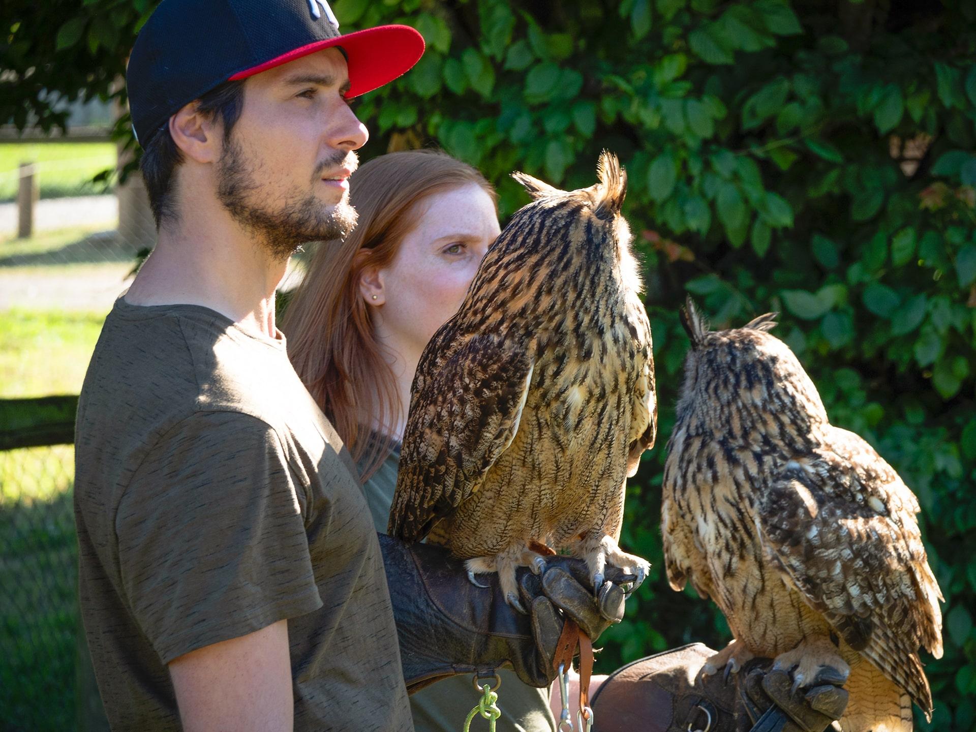 Blog Lifestyle - Apprentis Fauconniers 2 - Saskia Parein