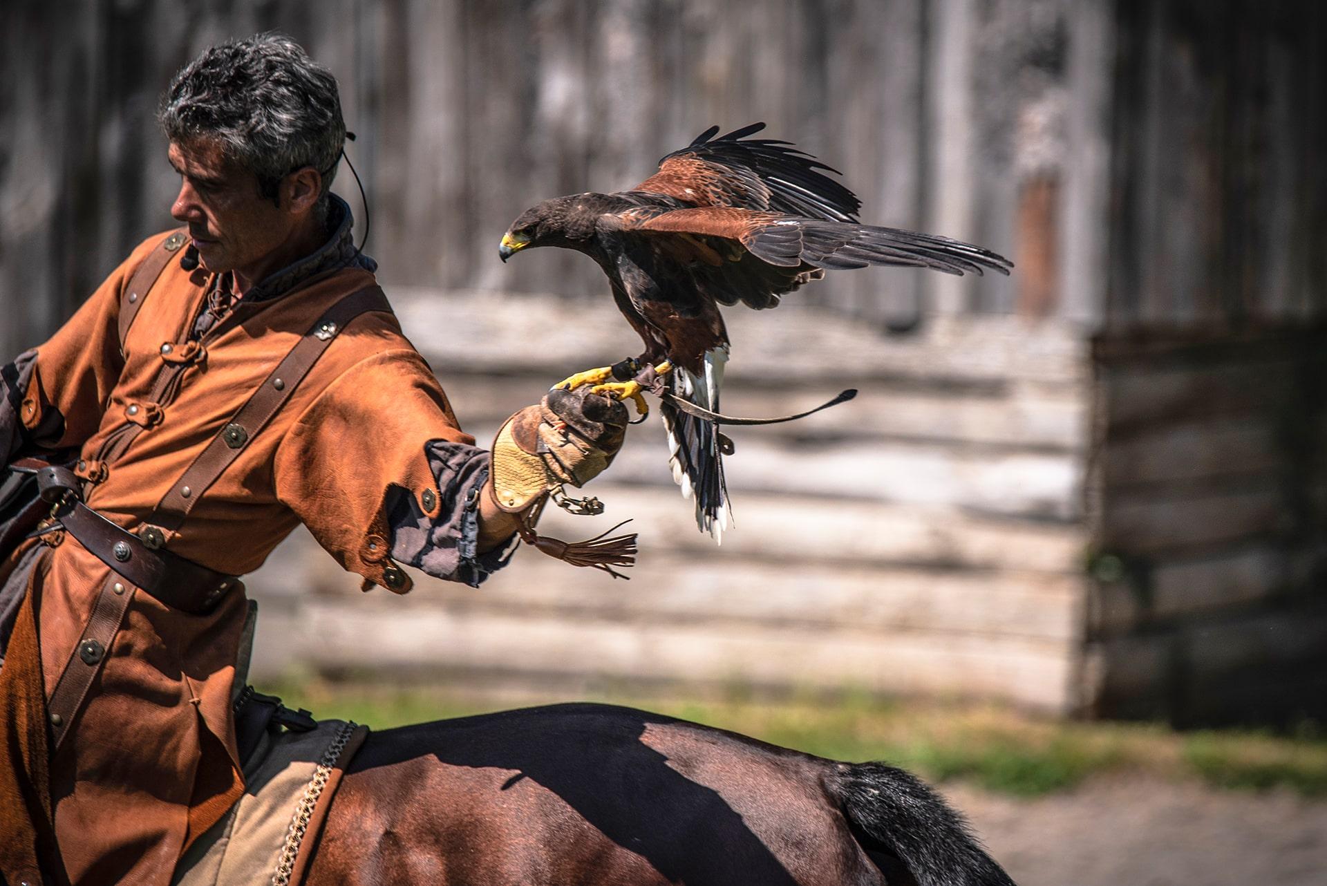 Blog Lifestyle - Les Spectacle des Aigles et des Chevaux - Saskia Parein