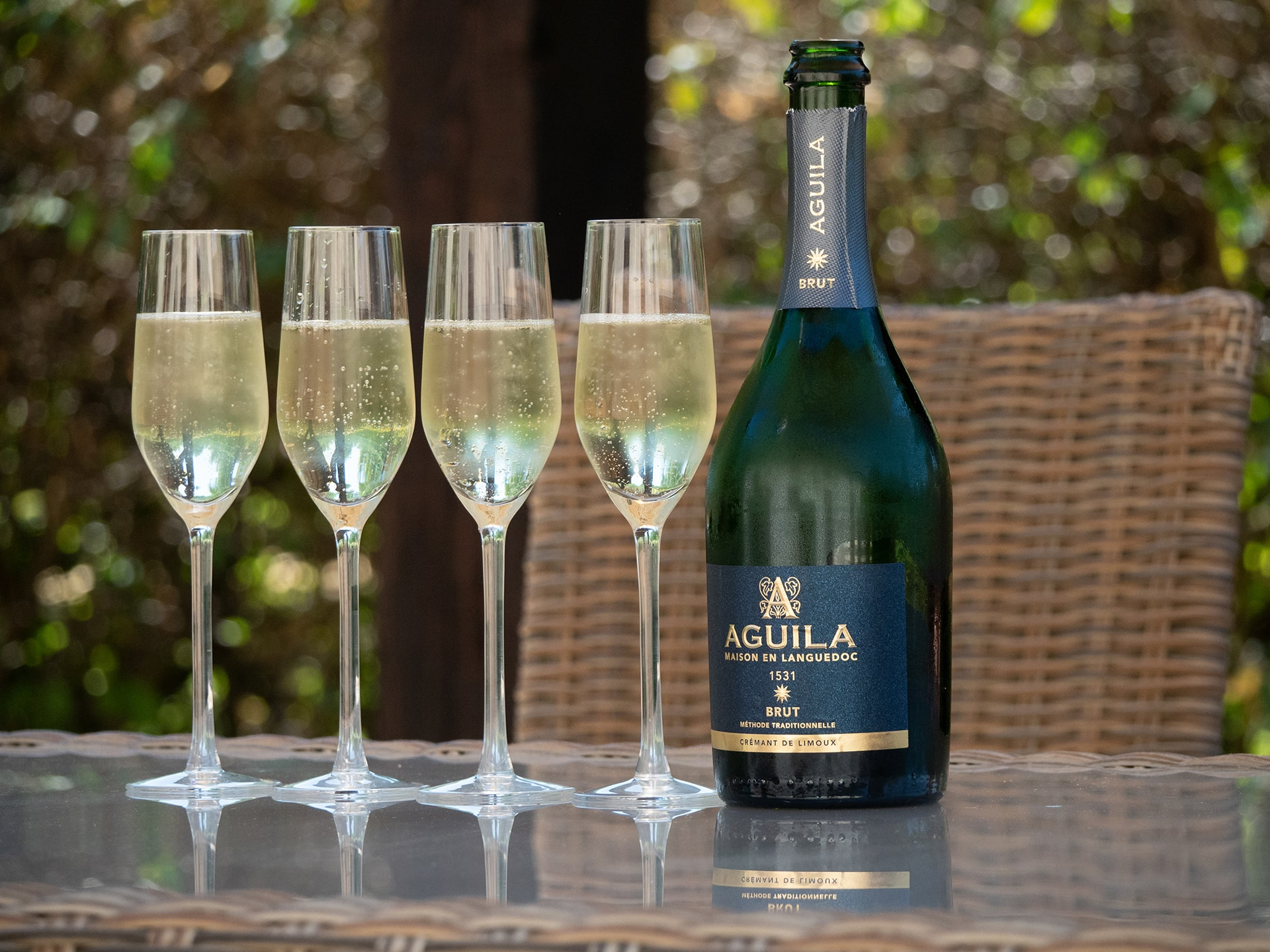 Blog Lifestyle - Apéritif au Champagne aux Aigles du Léman - Saskia Parein