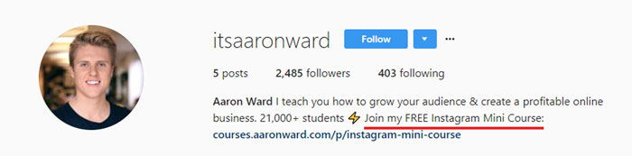 Aaron Ward Instagram Bio Example
