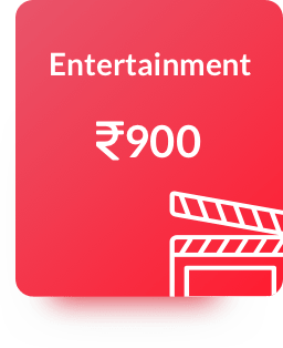Category Entertainment Expenses Billeasy