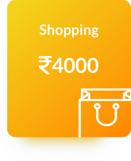 Category Shopping Expenses Billeasy