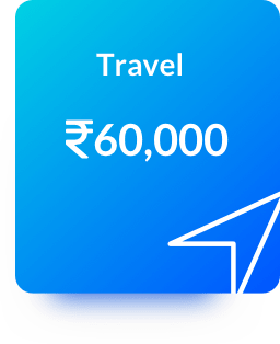 Category Travel Expenses Billeasy