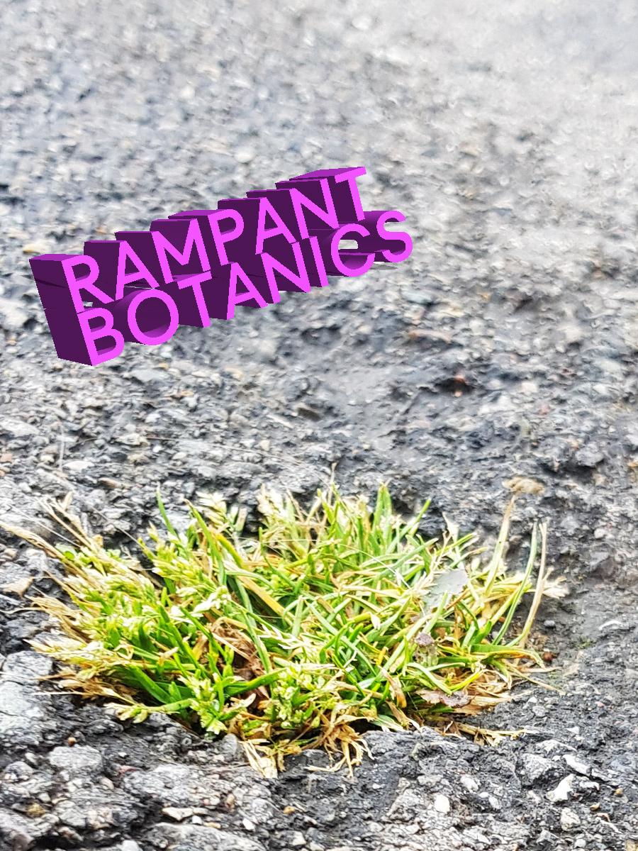 Rampant Botanics: Simon Berz & IOKOI