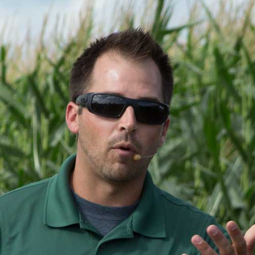 Does Foliar-Applied Sugar Increase Soybean Yields?