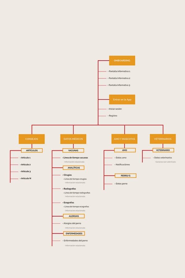 dogtor - arquitectura de información