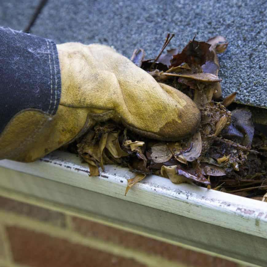 Gutter Cleaning in Rockford IL