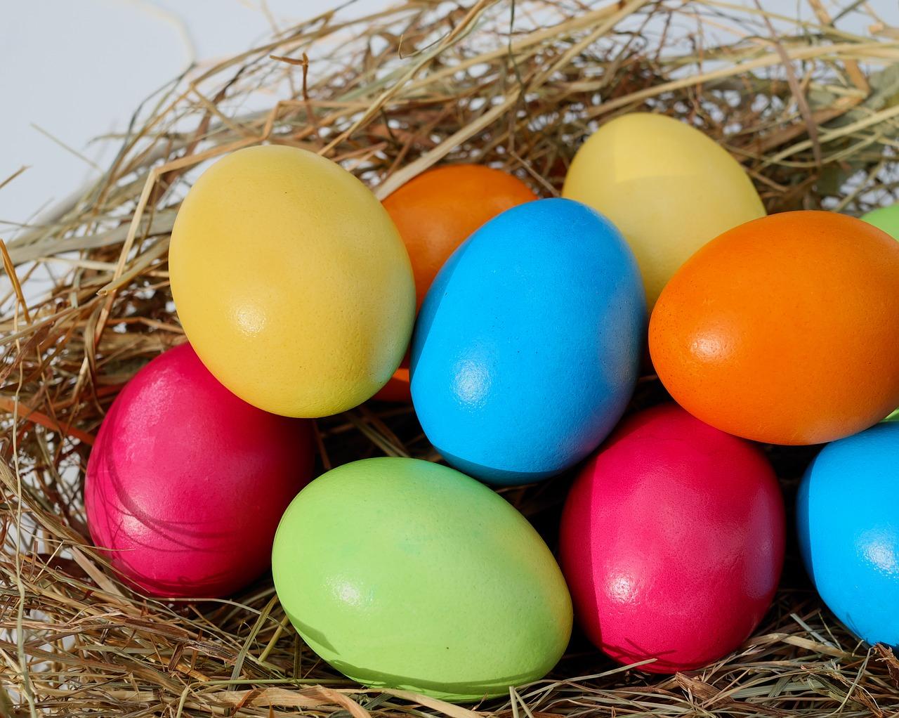 Mount Edgcumbe Easter Egg Hunt 2020
