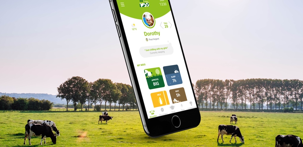 An image of the Me+Moo app logo. We implemented a gamification strategy that promotes sharing, and therefore viral dissemination of the 5G Rural First message and the app itself. This is a fun social app using data from the IoT (Internet of Things) collars of dairy cows in a connected farm. The app allows people to befriend a cow, and to follow her journey for a week.
