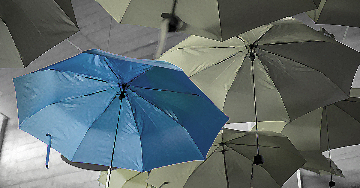 Unique Umbrella Blue - Stand out from the crowd