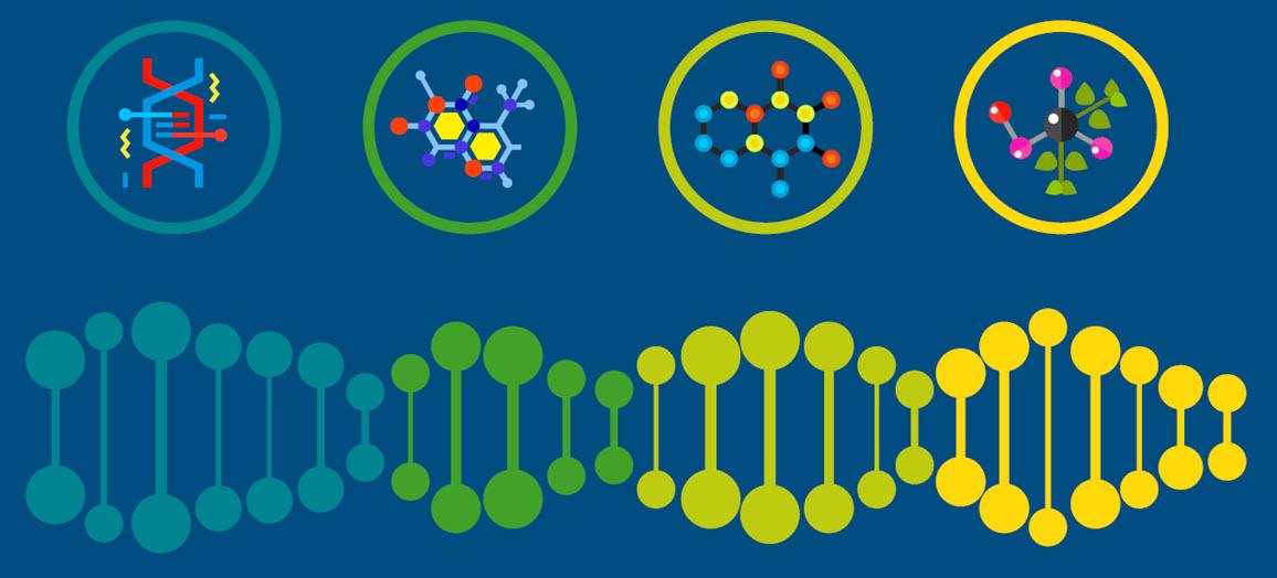 dna biology
