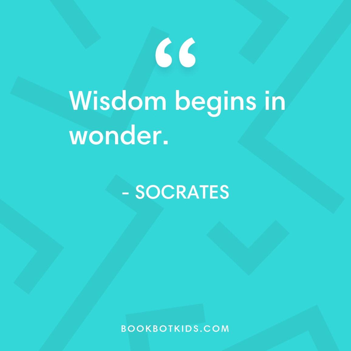 Wisdom begins in wonder. – Socrates
