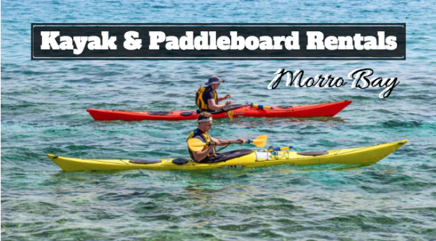 kayak and paddleboard rental morro bay