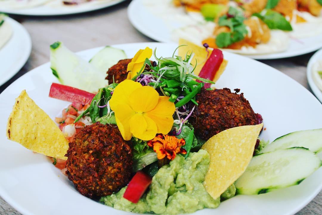 Falafel + Hummus + Taboule