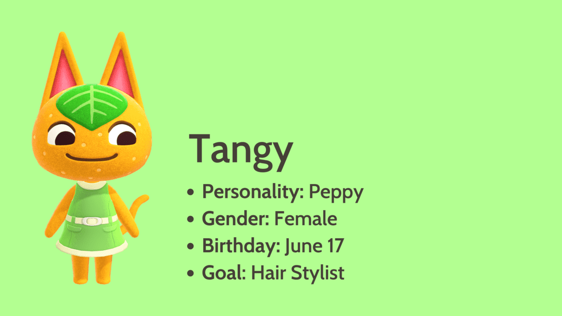 Tangy info card
