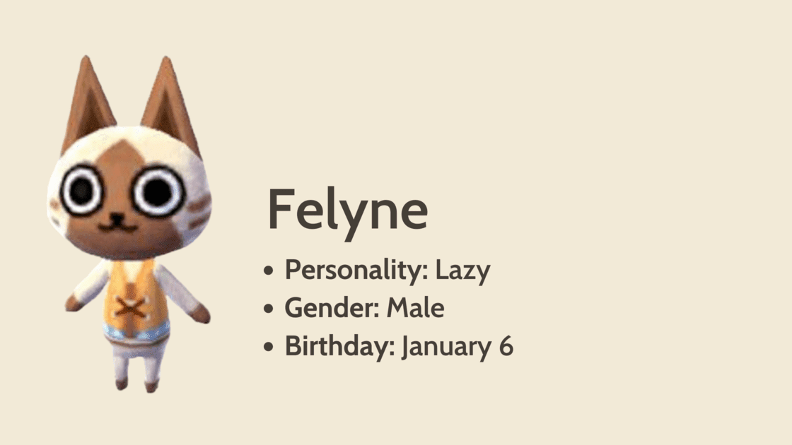 Felyne info card