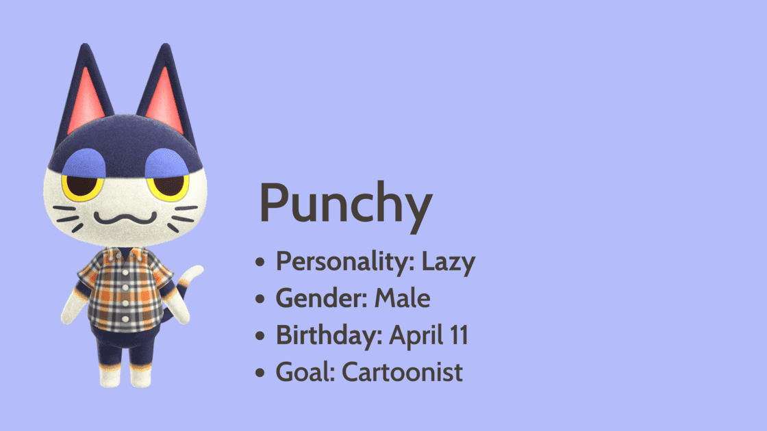 Punchy info card
