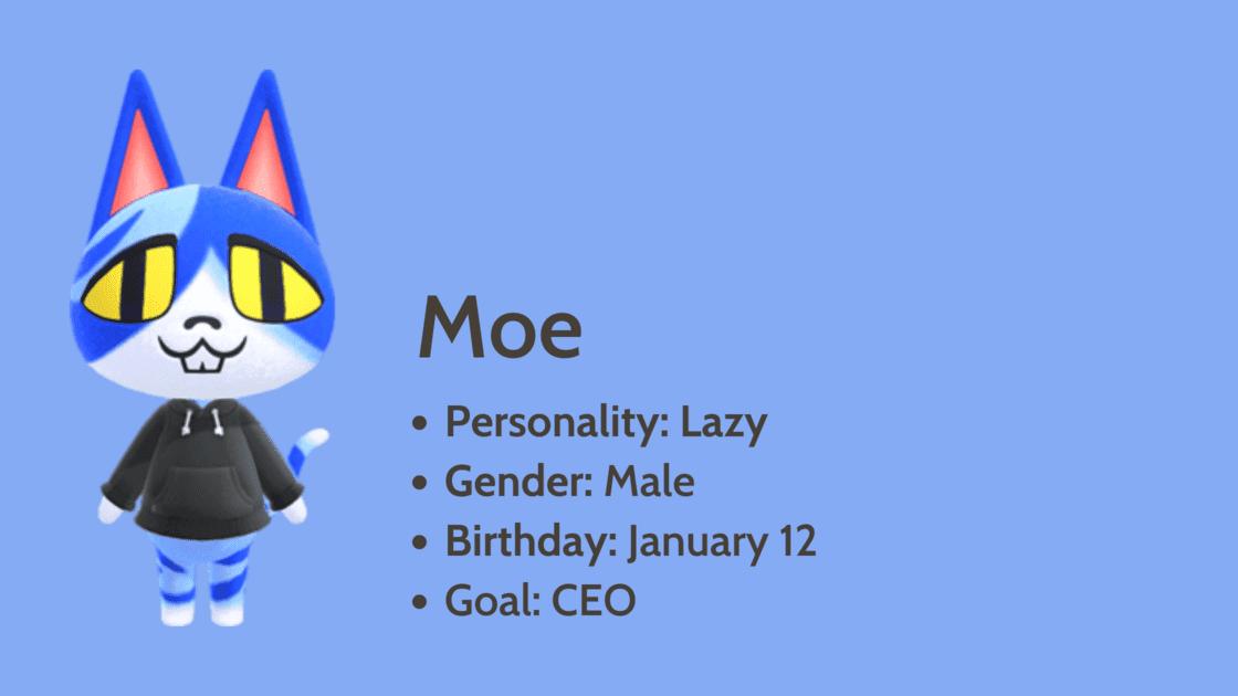 Moe info card