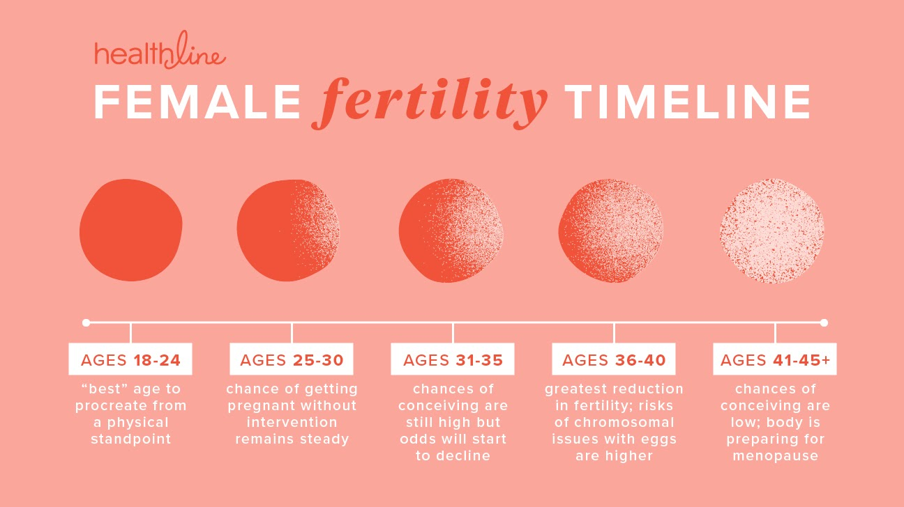 Timeline of female fertility in relationship to age
