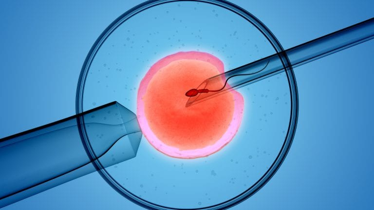 Close up microscope picture of IVF insertion of sperm into egg, artistic rendition
