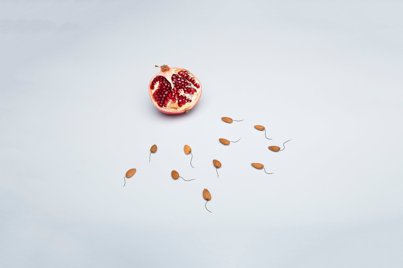 An image of a pomegranate on a plain, white backdrop with almonds positioned around it, lines drawn behind them to make them look like sperm cells.