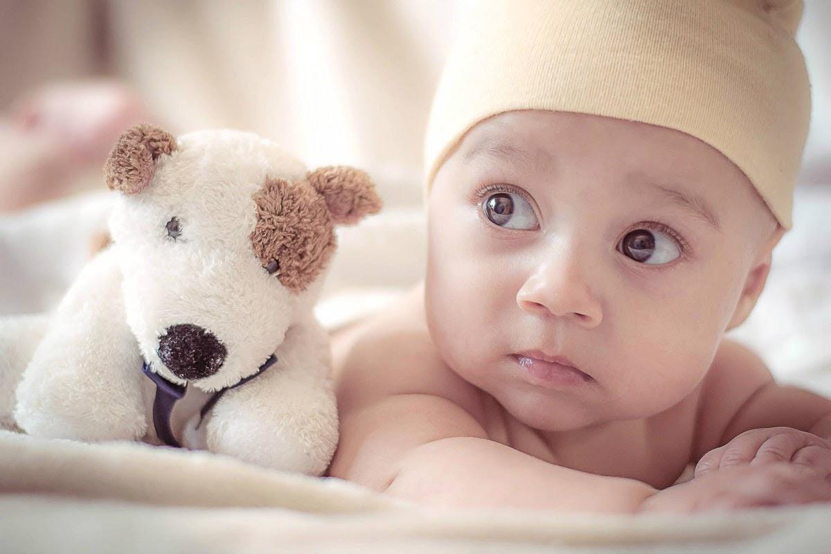 a baby laying next to a dog stuffed animal