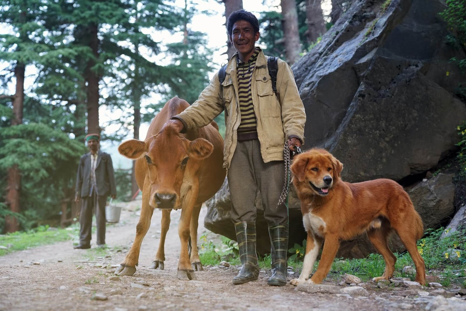 A man in the forest smiles next to a brown dog and a brown cow