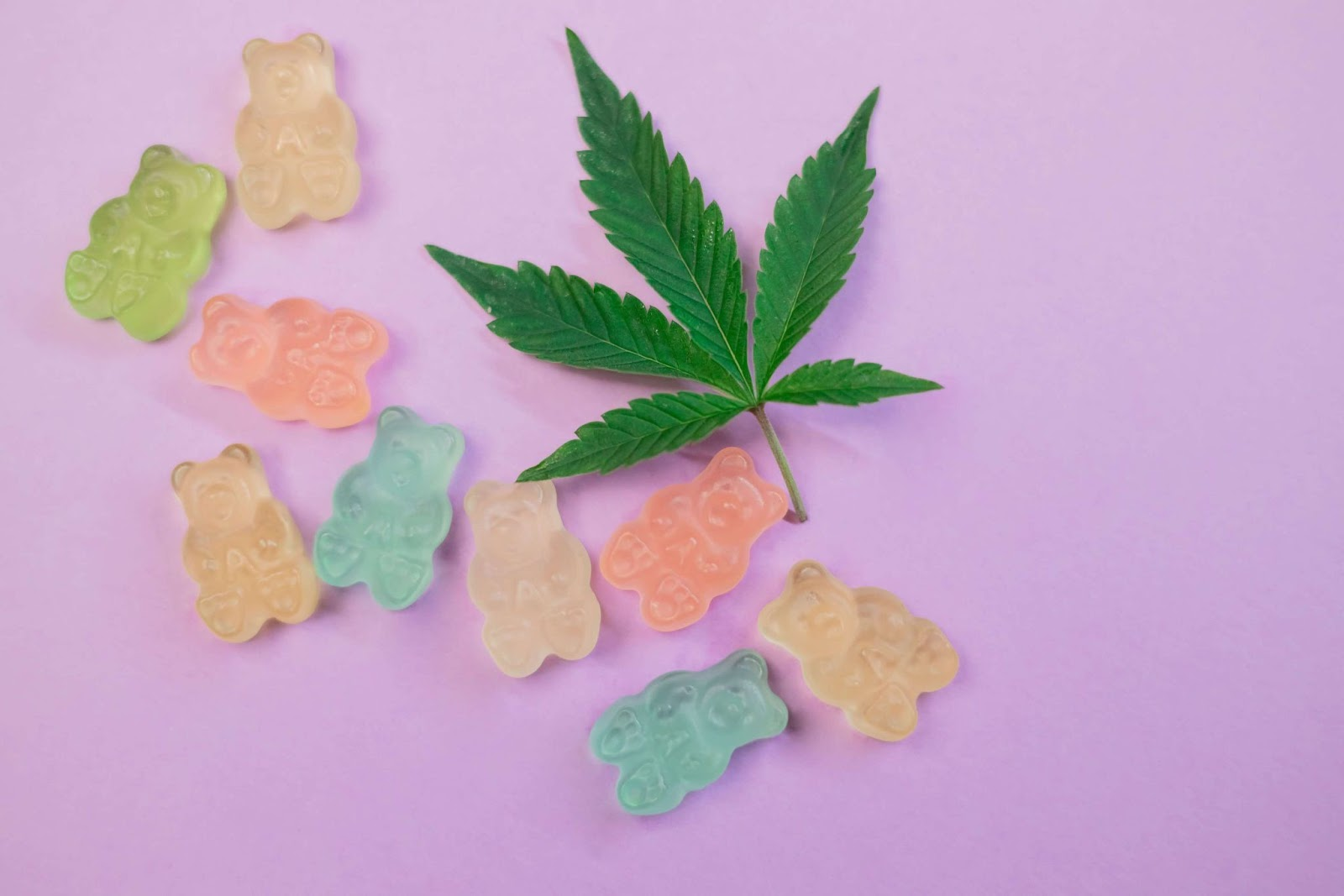 A group of gummy bears next to a marijuana leaf on a purple background