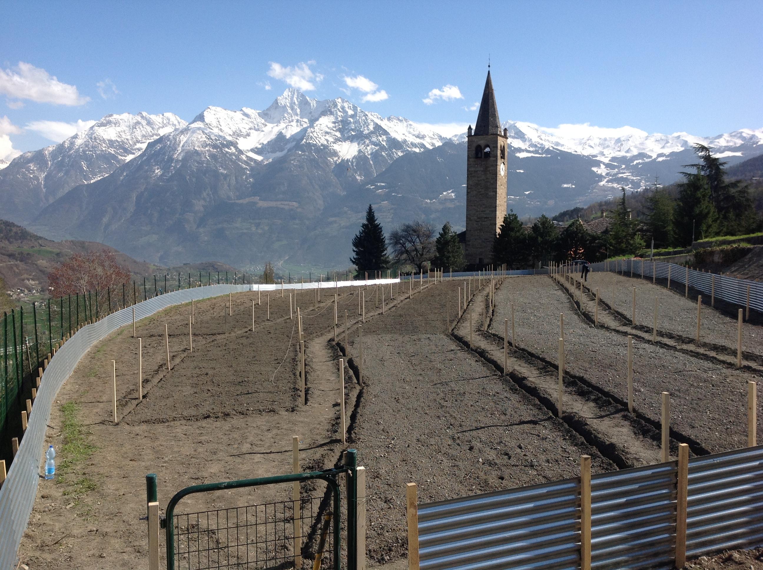 Panoramica dell'allevamento di Gignod