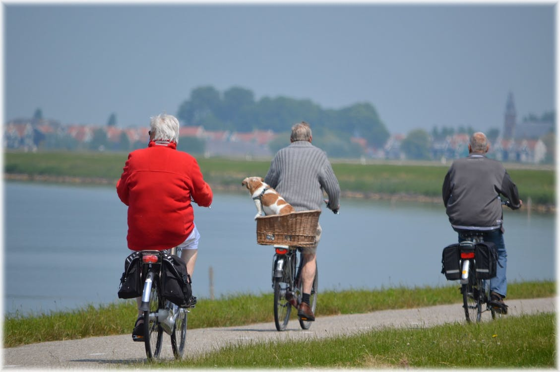 senior citizens riding bicycles