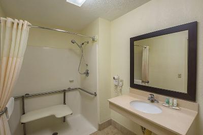 1 King Bed, Accessible bathroom