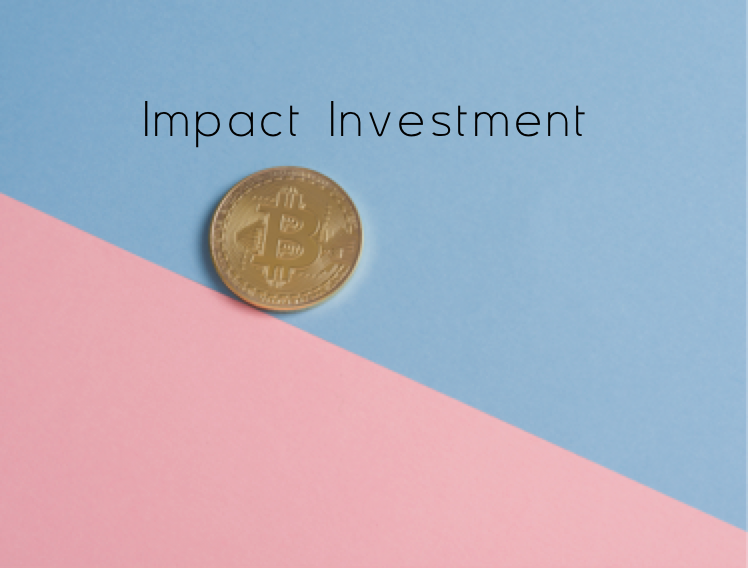 Indigo - Global Network of Mindful Doers - Impact Social Investment