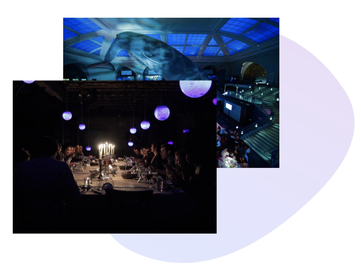 events, gala, curated dinners, for social and environmental impact funds