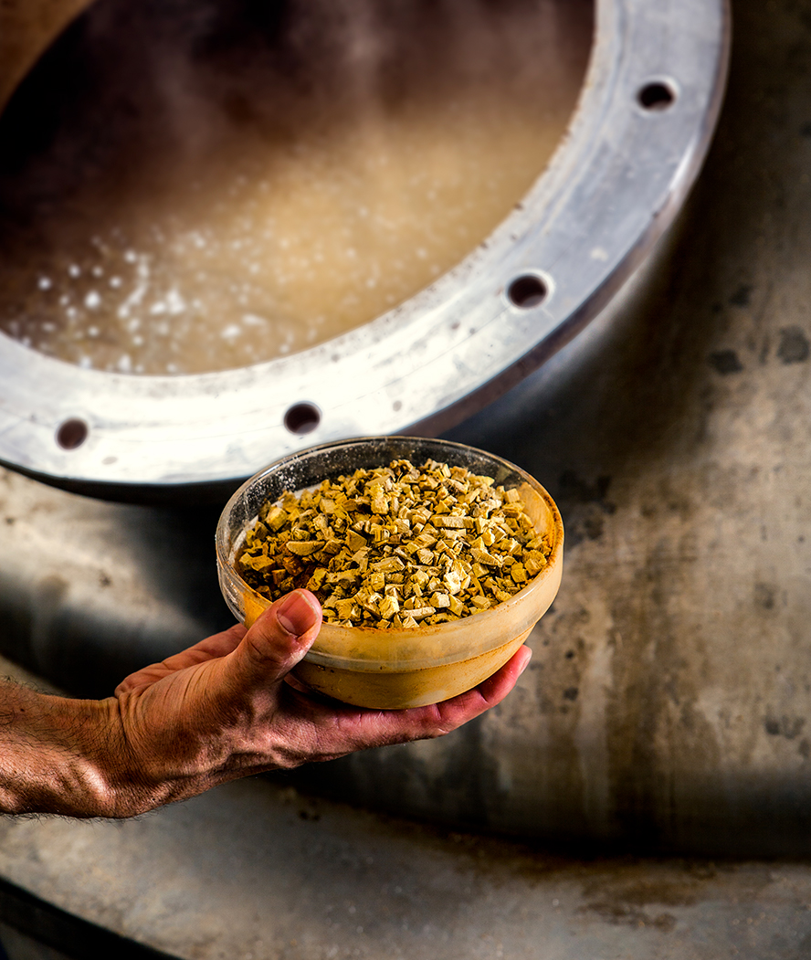 Boiling - La Binchoise Brewery Process